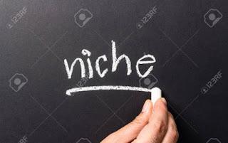 Pengertian Niche Blog, Jenis-Jenis & Cara Memilihnya