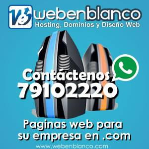 Web En Blanco