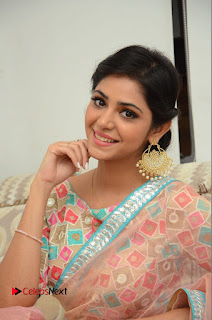 Actress Priyanka Bharadwaj Pictures in Saree at Mister 420 Press Meet  0118.JPG