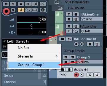 Setting Input Audio Track