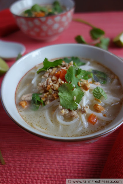 Thai Inspired Creamy Chicken Noodle soup (dairy and gluten free)