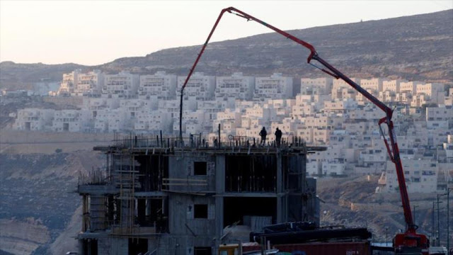 Amnistía llama a bloquear productos de asentamientos israelíes