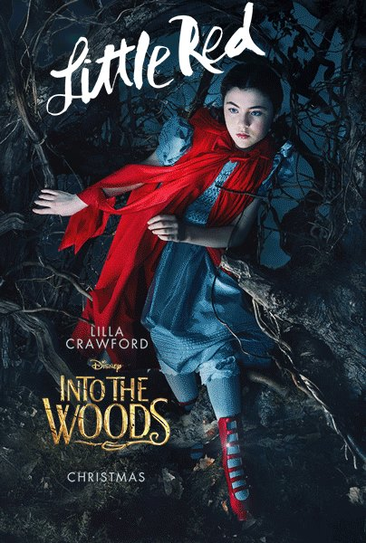 Poster 9: Into the Woods