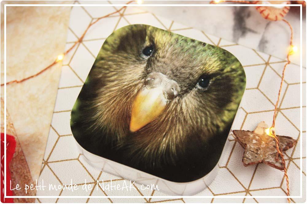 Boîte d'écouteur personnalisable Kakapo GoCustomized