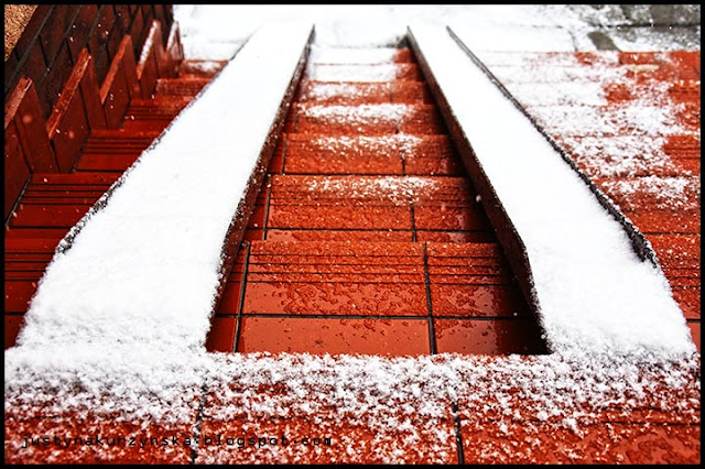 Atak zimy wiosna zdjęcie
