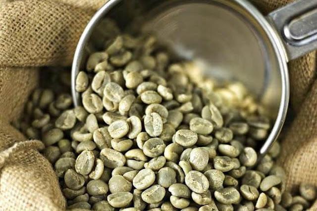 Fakta Green Coffee ( Kopi Hijau ) Yang Harus Anda Ketahui