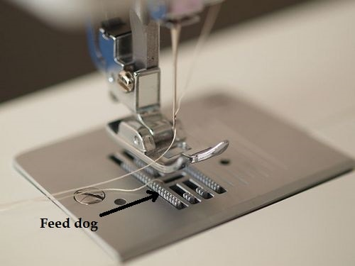 feed dog sewing machine