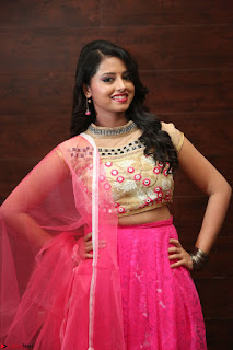 Geethanjali sizzles in Pink at Mixture Potlam Movie Audio Launch 031.JPG