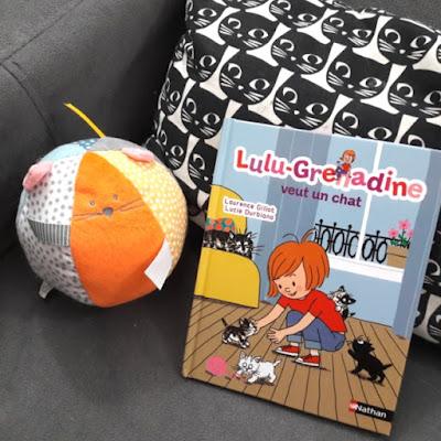 Lulu-Grenadine veut un chat de Laurence Gillot et Lucie Durbiano