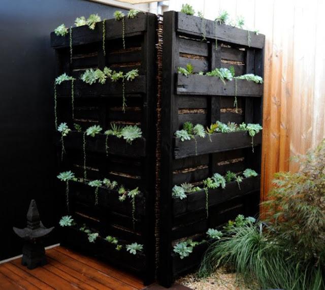 Dinding hijau dengan tanaman dan palet bekas