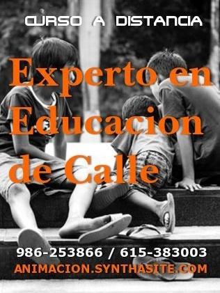 http://animacion.synthasite.com/curso-experto-en-educacion-de-calle.php