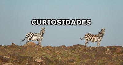 Curiosidades Bíblia