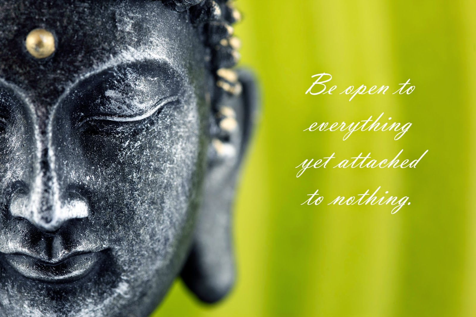 Be open to everything Buddha quotes