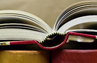 Livro aberto - Tipos de gêneros textuais