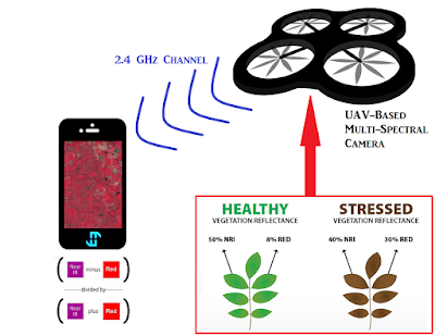 NIR Environmental Vegetation Monitoring For Ecosystems and Precision Agriculture
