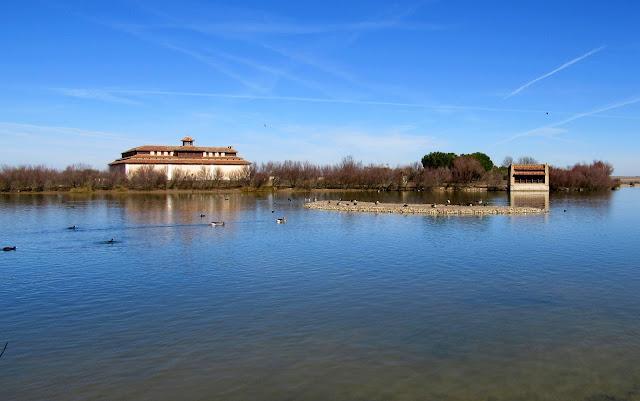 Casa del Parque. Laguna de Villafáfila