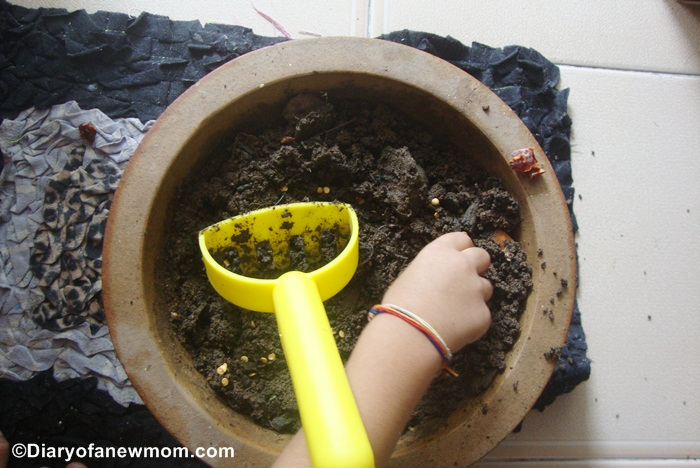 Planting seeds with toddlers - Our experience with planting chilli seeds