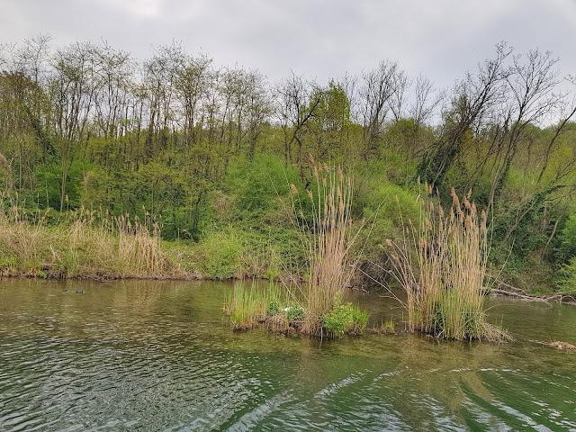 Gita in battello sul fiume Adda