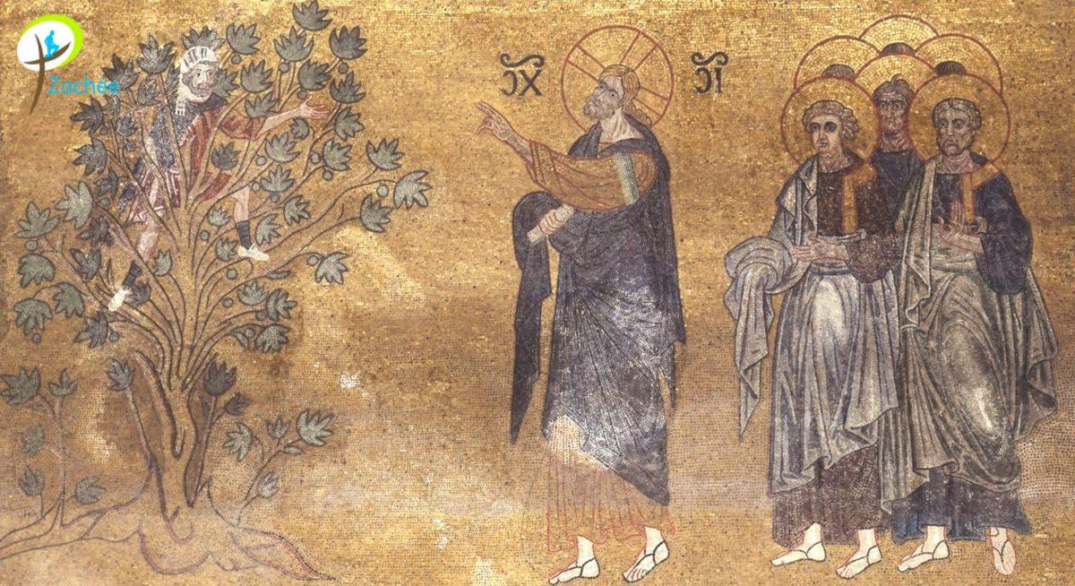 http://www.saintmaximeantony.org/2017/02/parcours-zachee.html