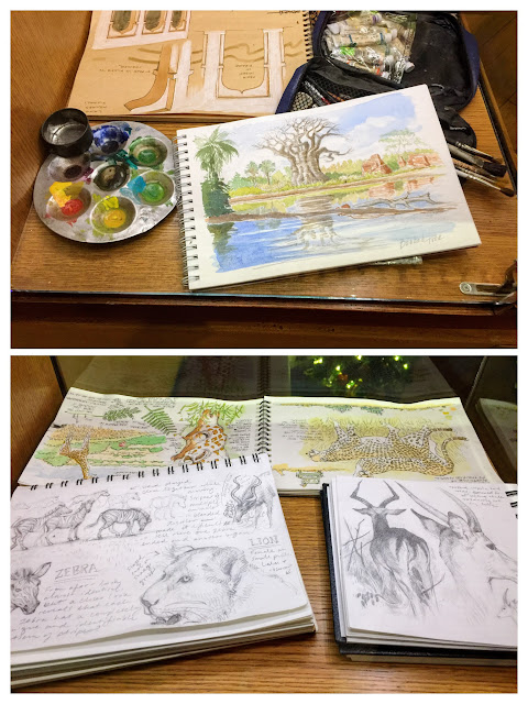 Sketches of baobab tree and African wildlife