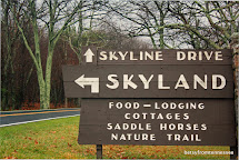 Joyful Reflections Skyland Resort Skyline Drive Virginia