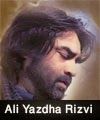 http://www.humaliwalayazadar.com/2015/04/ali-yazdha-rizvi-nohay-2013-to-2016.html