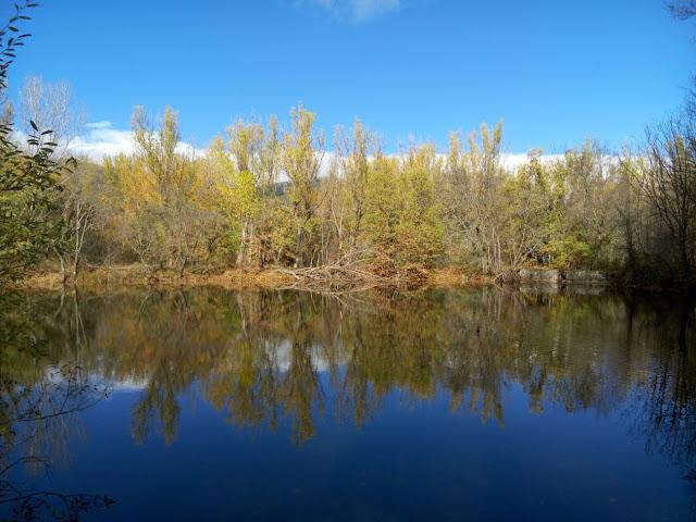 Vista-desde-embarcadero-bosque-finlandes