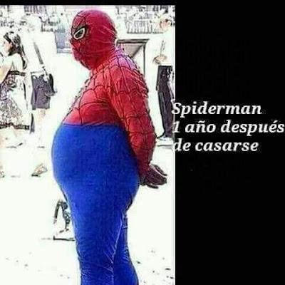 Spiderman un año después de casarse, gordo, barrigón