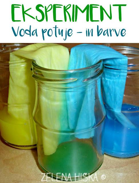 Eksperiment - voda potuje - mešanje barv
