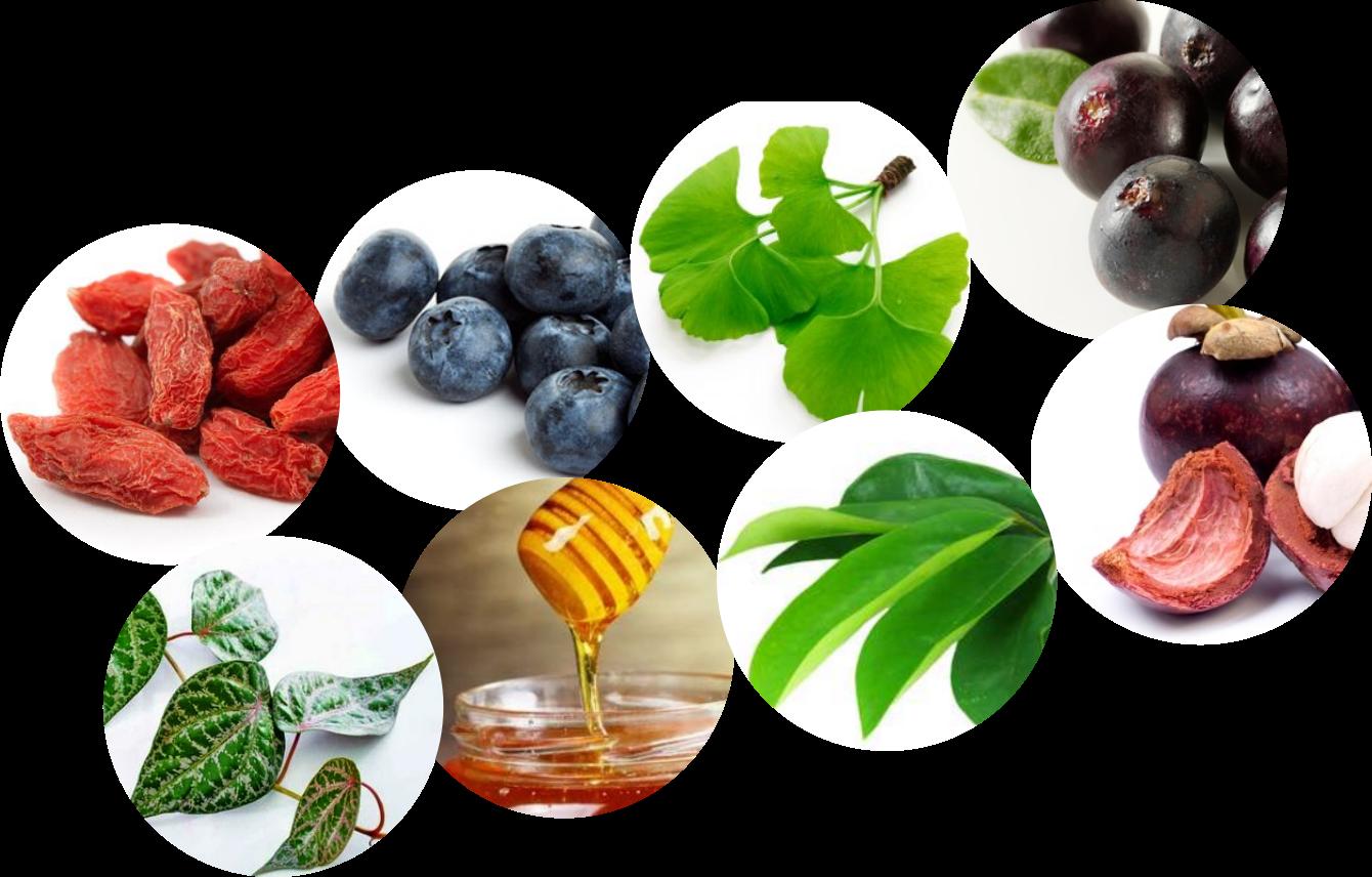 cara menyembuhkan polip usus dengan obat herbal