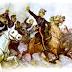 La campaña del centro en el Guárico (1817-1818)