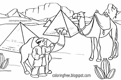 Cute Egypt desert animal Pyramids graceful caravan transport Egyptian camel colouring pages for kids