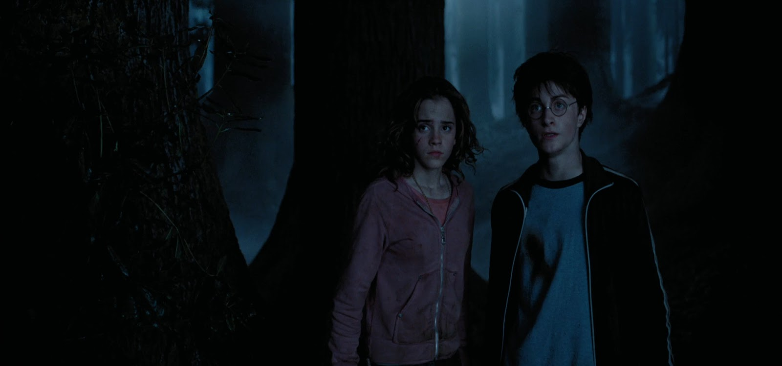 Harry Potter 3 2004 HD 1080p Español Latino 60fps captura 2