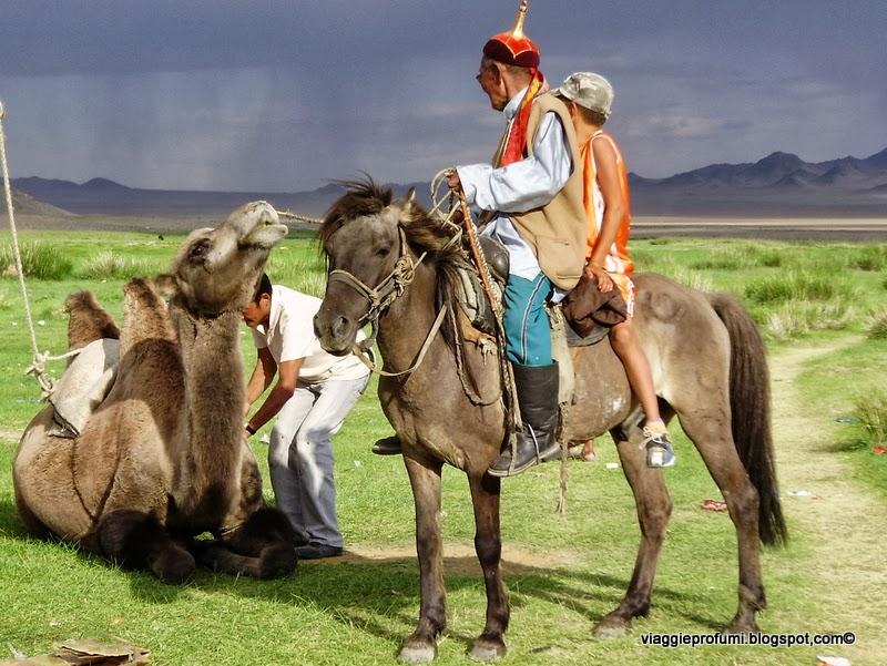 Mongolia, cavalieri e cammelli