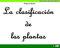 http://cplosangeles.juntaextremadura.net/web/edilim/tercer_ciclo/cmedio/las_plantas/la_clasificacion_de_las_plantas/la_clasificacion_de_las_plantas.html