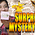 Opening Toy Mystery Boxes