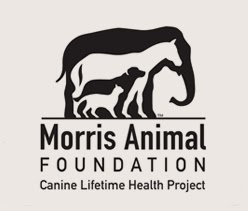 Morris Animal Foundation Golden Retriever Lifetime Study