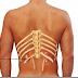 Ο πόνος στην μέση μήπως οφείλεται στα νεφρά;
