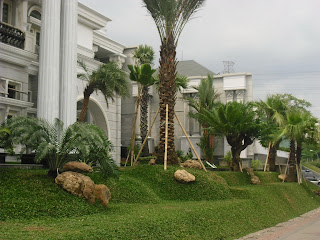 Tukang Taman Surabaya - Foto Taman