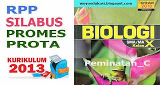 RPP, SILABUS, PROMES, PROTA KURIKULUM 2013 SMA MAPEL BIOLOGI KELAS X