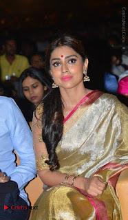 Actress Shriya Saran New Images in Silk Saree at Gautamiputra Satakarni Audio Launch  0028.jpg