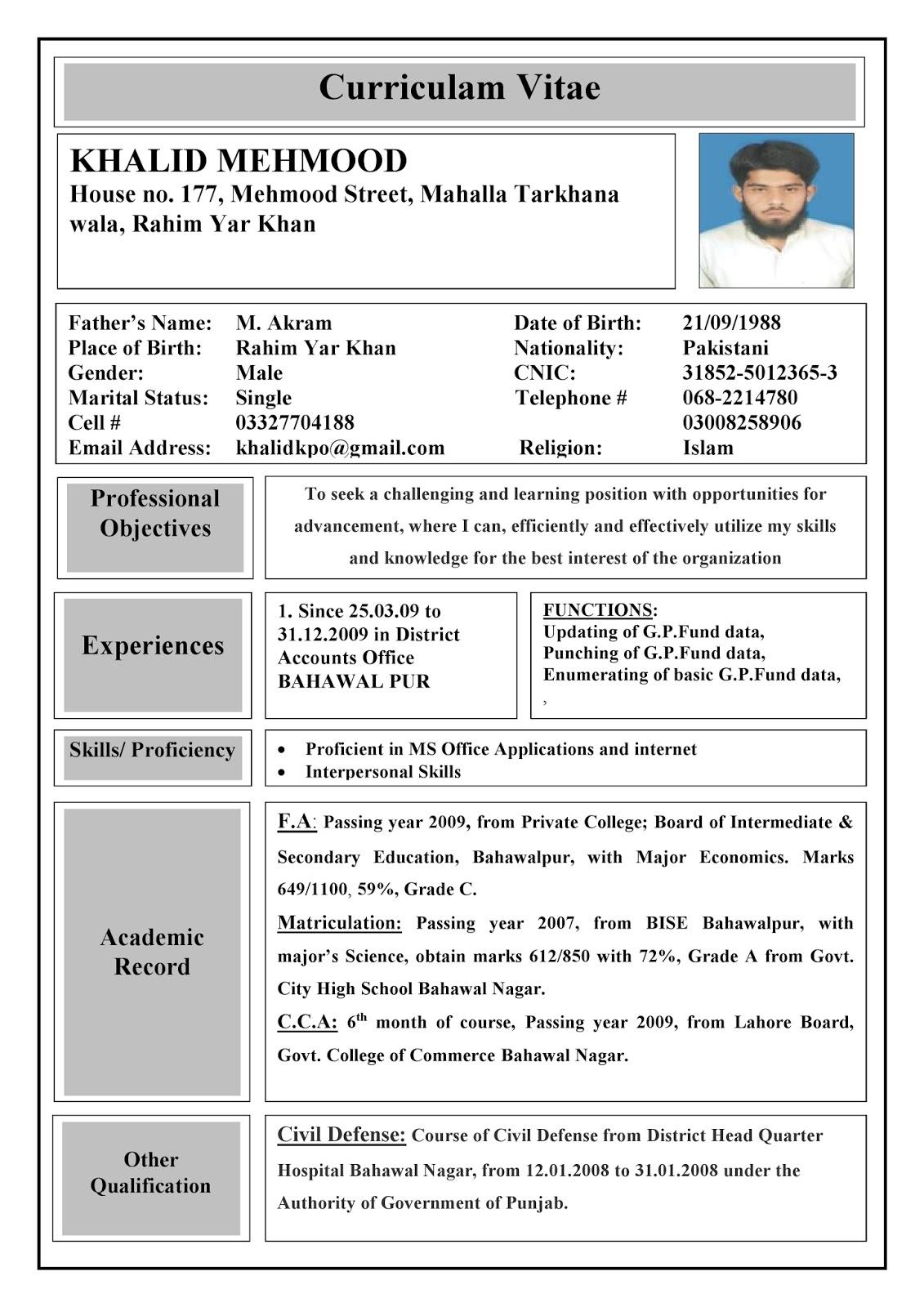 curriculum vitae cv sample 16