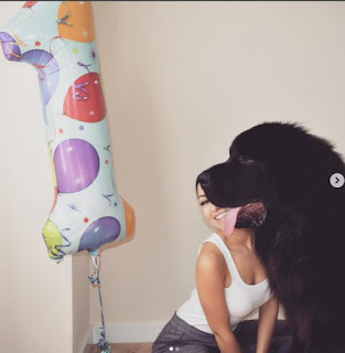 Matt Murray S Girlfriend Christina And Her Dog Beckham