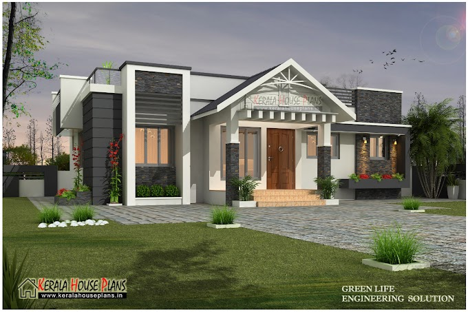 Beautiful modern single floor house design
