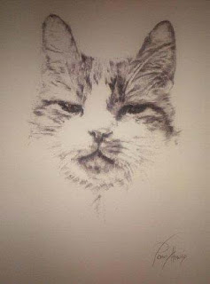 Drawing of Smudge by Penny Howie