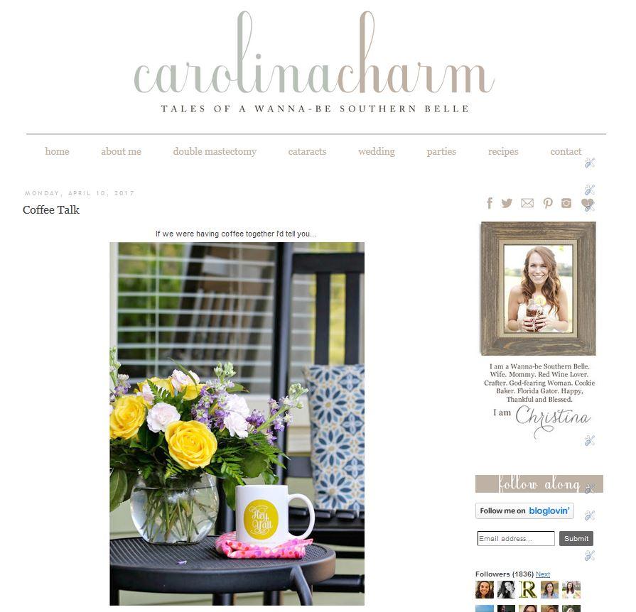 Carolina Charm Re-Branding Reveal!