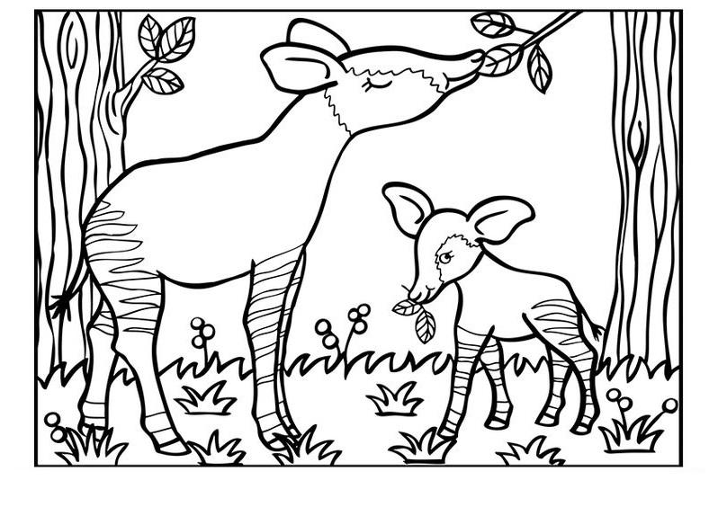 Tranh tô màu gia đình con hươu xinh