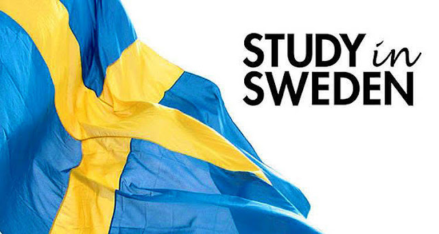 Fully Funded Scholarships for International Students in Swedish Universitiy 2019 | OUR SEEKER