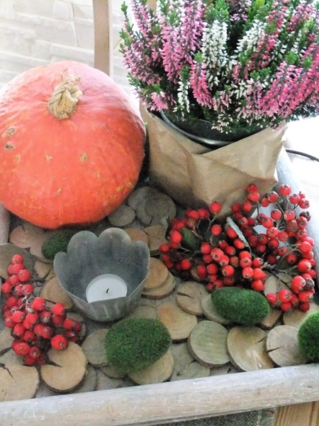 Heidekraut, Kürbis, Beeren und Holz auf einem Tablett
