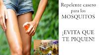 https://steviaven.blogspot.com/2017/07/los-mejore-repelentes-caseros-de-mosquitos.html